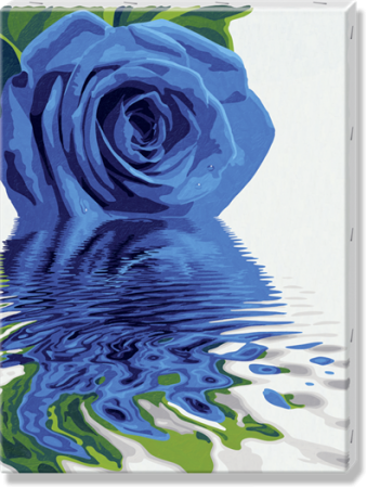 Malen nach Zahlen auf Leinwand XXL Reflections of a Blue Rose
